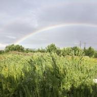 И двойная радуга