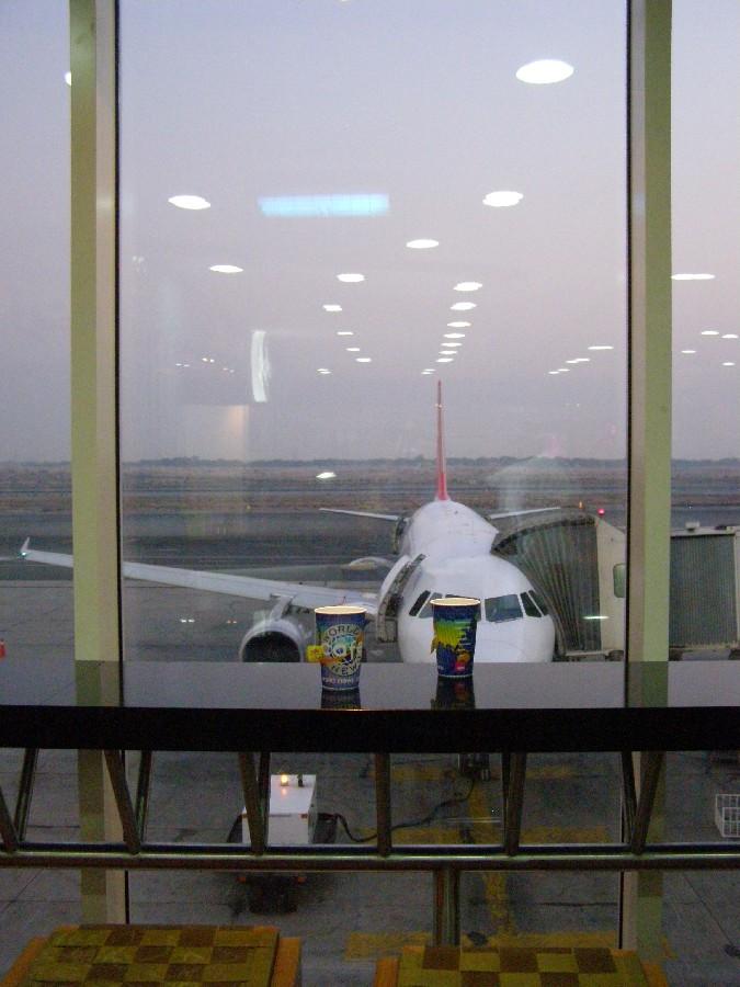 Скоро полетим домой. Аэропорт в ОАЭ